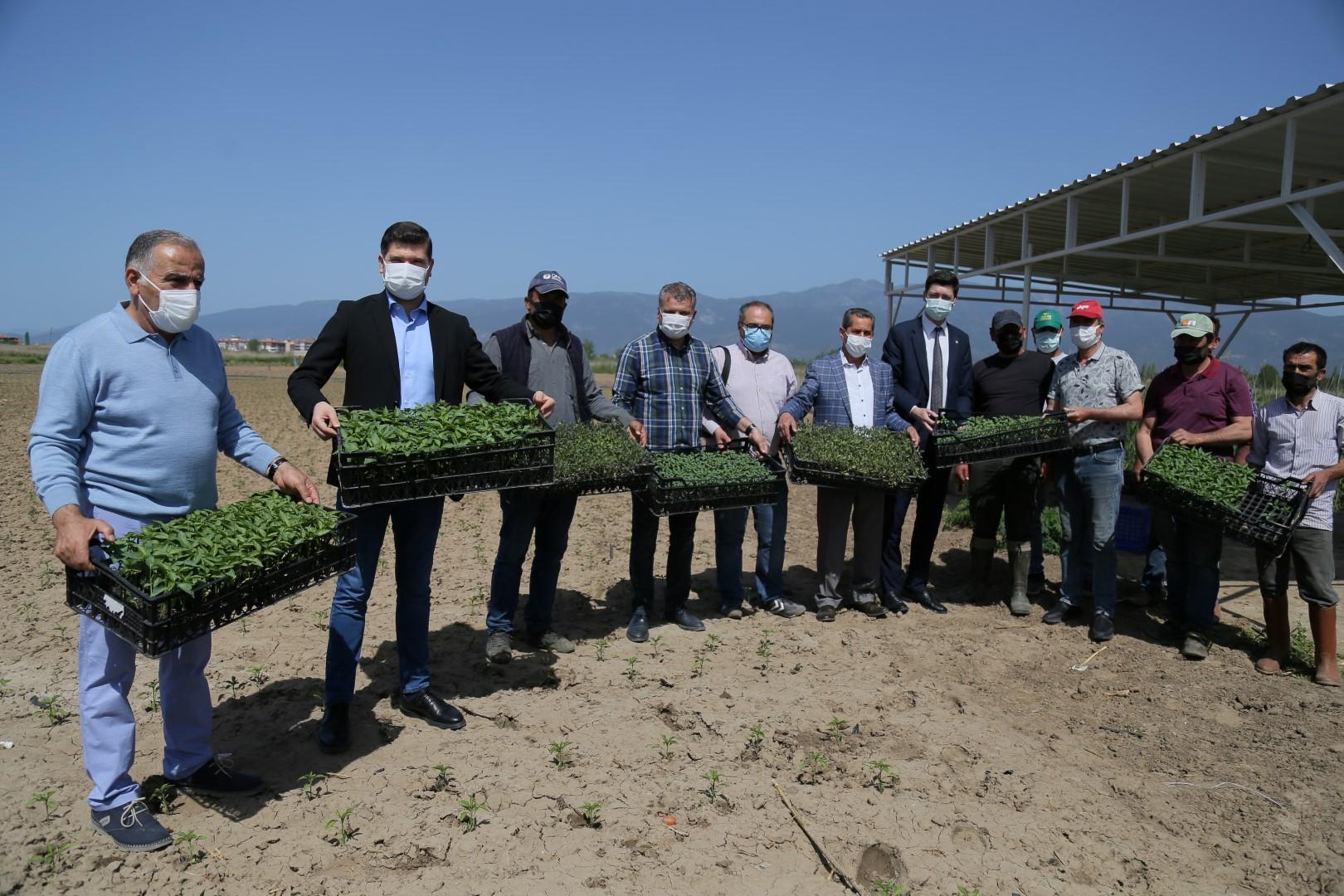 Edremit Belediyesi'nin Tarıma Desteği Sürüyor